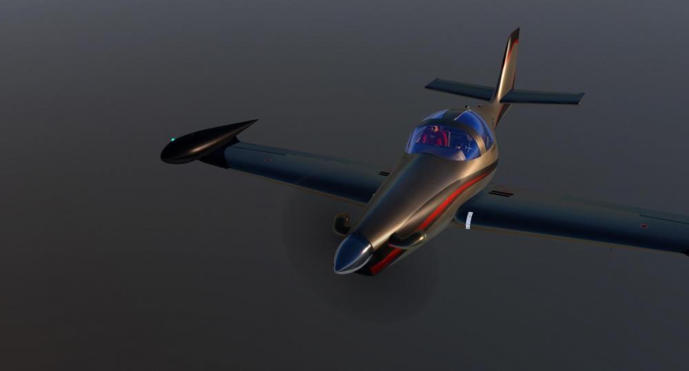 X-Plane 2019-03-19 16-56-32.jpeg