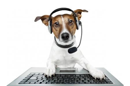 beta-test-dog.png.97b721ca475ca51e812354