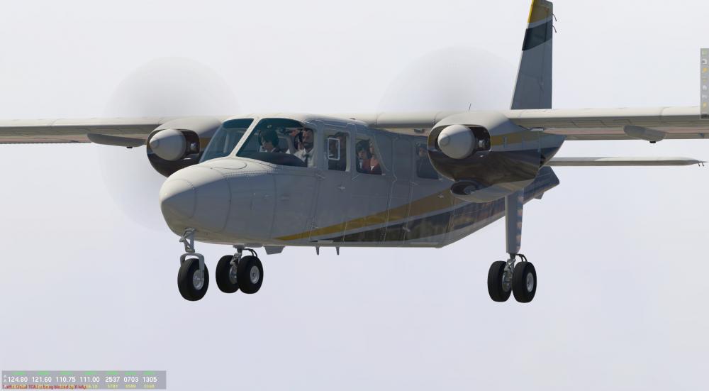 BN-2B Islander - 2020-04-25 09.18.12.png